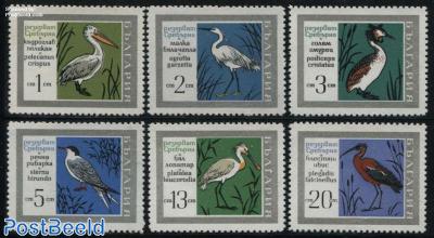 Sreburna park, birds 6v
