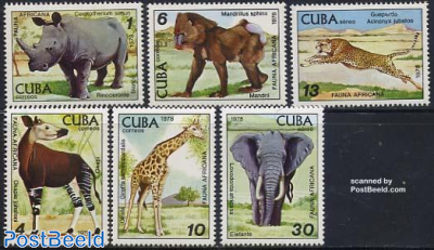 Havana zoo 6v