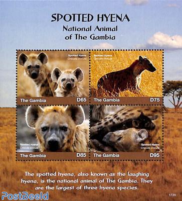 Spotted Hyena 4v m/s