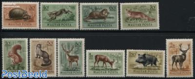 Forest animals 10v