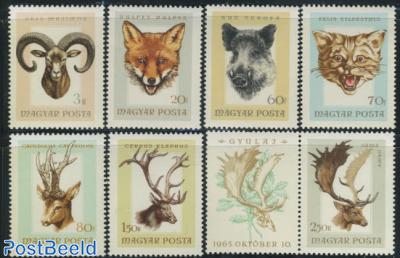 Hunted Animals 7v