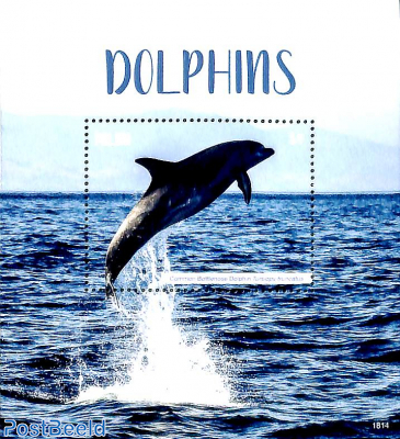 Dolphins s/s