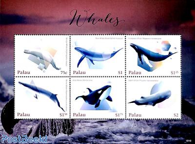 Whales 6v m/s