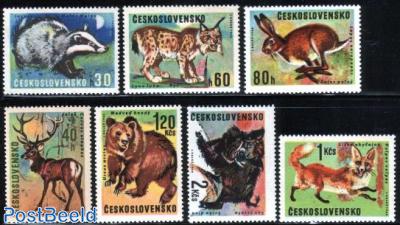 Animals 7v